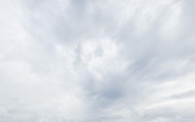 Maximal unaufgeregte Segelflieger